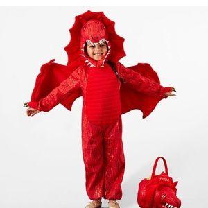 Pottery Barn Dragon Costume
